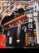 中村獅童のいざ歌舞伎へ (NHKテキスト 趣味どきっ!)