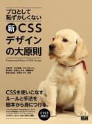 【期間限定価格】プロとして恥ずかしくない 新・CSSデザインの大原則