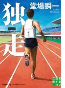 独走(実業之日本社文庫)
