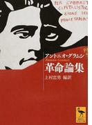 革命論集 (講談社学術文庫)(講談社学術文庫)