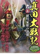 真田大戦記 六 上 徳川家康の逆襲