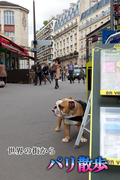 世界の街から・パリ散歩(世界の街から)