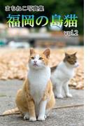 まちねこ写真集・福岡の島猫 vol.2(ニャンと猫ねこ)