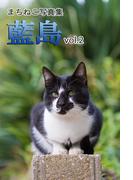 まちねこ写真集・藍島 vol.2(ニャンと猫ねこ)