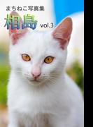 まちねこ写真集・相島 vol.3(ニャンと猫ねこ)