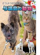 与論島の動物