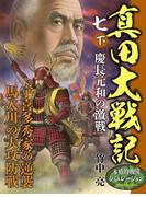 真田大戦記 七 下 慶長元和の激戦