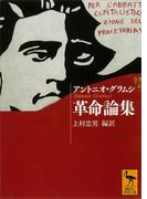 革命論集(講談社学術文庫)