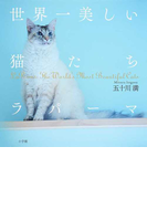 世界一美しい猫たちラパーマ