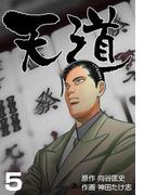 【期間限定価格】天道 5