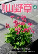 趣味の山野草 2017年 04月号 [雑誌]