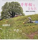 千年桜とともに 醍醐桜と吉念寺集落
