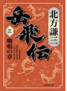 岳飛伝 三 嘶鳴の章(集英社文庫)
