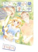 ここが愛のまん中(4)(白泉社レディース・コミックス)