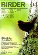 BIRDER (バーダー) 2017年 04月号 [雑誌]