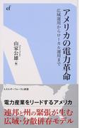 アメリカの電力革命 広域運用からローカル運用まで (エネルギーフォーラム新書)