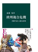 欧州複合危機 苦悶するEU、揺れる世界(中公新書)