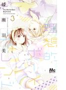 理想的ボーイフレンド 3 (マーガレットコミックス)