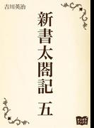 新書太閤記 五