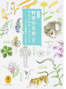 野草の名前 和名の由来と見分け方 文庫版 夏