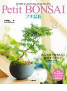【期間限定価格】プチ盆栽 おしゃれでかわいい緑のインテリア
