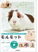 モルモット(小動物★飼い方上手になれる!)