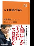 人工知能の核心(NHK出版新書)