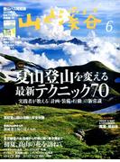 山と渓谷 2017年 06月号 [雑誌]