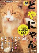 どやにゃん ドヤ顔猫の生き方