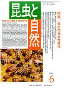 昆虫と自然 2017年 06月号 [雑誌]