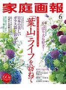家庭画報 2017年6月号(家庭画報)
