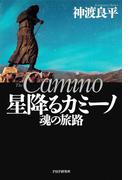 星降るカミーノ