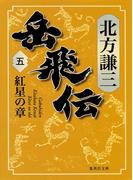 岳飛伝 五 紅星の章(集英社文庫)