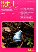 月刊 むし 2017年 06月号 [雑誌]