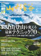 月刊山と溪谷 2017年6月号【デジタル(電子)版】