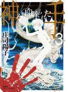 神々の血塗られた手 : 3(ジュールコミックス)