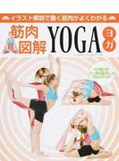 筋肉図解YOGA イラスト解説で働く筋肉がよくわかる