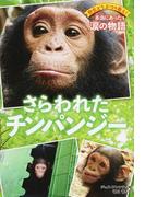 さらわれたチンパンジー (野生どうぶつを救え!本当にあった涙の物語)