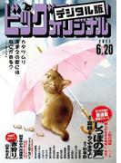 ビッグコミックオリジナル 2017年12号(2017年6月5日発売)