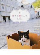 恋する猫さんぽ