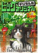 ビッグコミックオリジナル増刊 2017年7月増刊号(2017年6月12日発売)