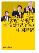 習近平が隠す本当は世界3位の中国経済(講談社+α新書)