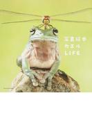 カエルLIFE 写真絵本