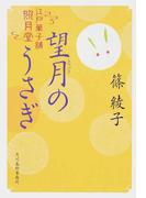 望月のうさぎ 江戸菓子舗照月堂