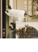 写真集 必死すぎるネコ (タツミムック)