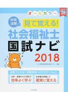 見て覚える!社会福祉士国試ナビ 2018