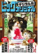 ビッグコミックオリジナル 2017年14号(2017年7月5日発売)