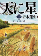 【全1-2セット】天に星 地に花(集英社文庫)