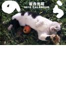 2018猫カレンダー のら 壁掛