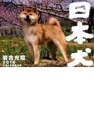 2018カレンダー 日本犬 壁掛